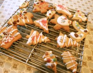 Christmas biscuits-iced1