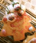 Christmas biscuits-iced21
