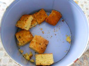 dead cake pudding1