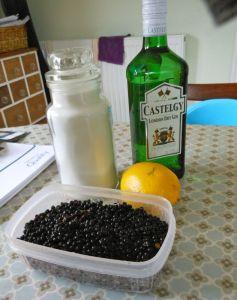 Elderberry Gin1