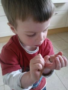 """Mummy, I love millipedes"""