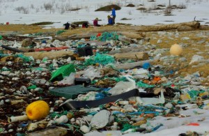 Heavily polluted beach in Norway.  Image from Coastal Care