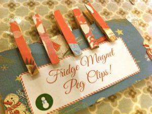Edited Fridge peg magnets8